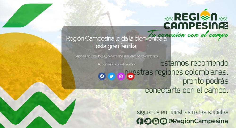 Región Campesina